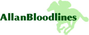 Allan Bloodlines consultancy and management services