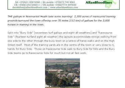 Newmarket heath gets a new hill – Turf Talk: 29 August 2016