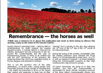 Remembrance – the horses as well – Turf Talk: 12 November 2018