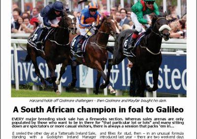 A SA champion in foal to Galileo – Turf Talk: 19 November 2018