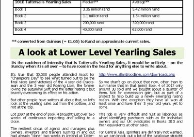 A look at Lower Level Yearling Sales – Turf Talk: 22 October 2018