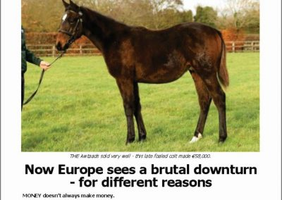 Now Europe sees a brutal downturn – Turf Talk: 26 November 2018