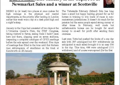 After January in the Cape, Feb at Newmarket Sales and a winner at Scottsville – Turf Talk: 6 February 2017