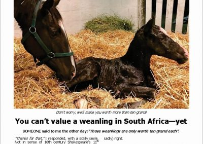 You can't value a weanling in SA – yet – Turf Talk: 14 May 2018