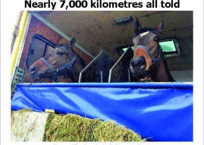 Nearly 7,000 kilometres all told- Turf Talk: 26 February 2018