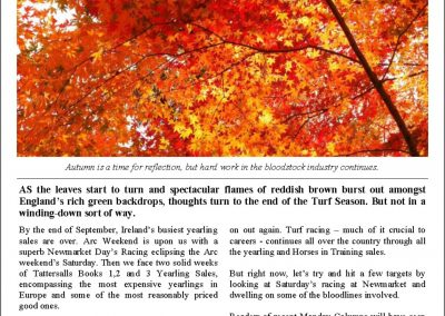 Autumn leaves and the season's climax – Turf Talk: 2 October 2017