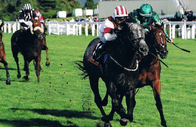 ICE_LORD_wins_for_Hintlesham_Racing_UK_at_Ascot