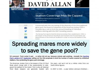 Spreading mares more widely to save the gene pool- Turf Talk: 9 September 2019