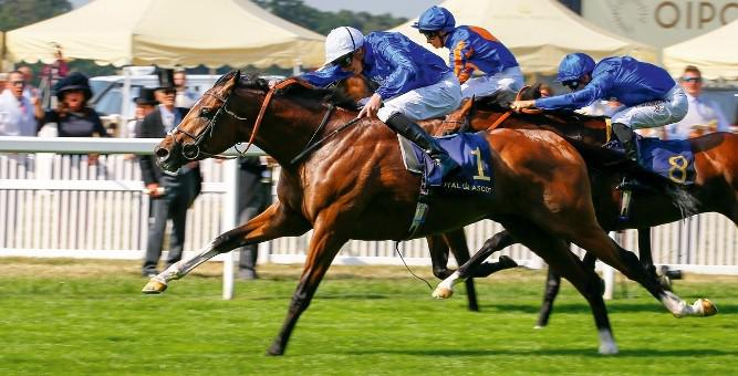 Barney Roy by Excelebration wins the Gr1 St James Palace Stakes.