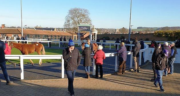A chilly but sunny start to a foal selling day with Warren Hill in the background. (D Allan).