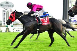 Gallic Princess wins at Turffontein for Spies Racing