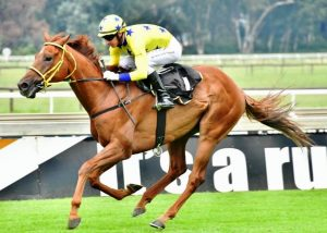 Imperial Ruby wins for Spies Racing at The Vaal