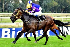 Louvain wins at The Vaal for Spies Racing