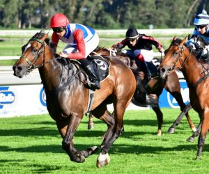 Mazari - wins for Spies Racing at the Vaal
