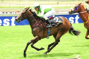 Miss Boomerang wins for Tobie Spies of Spies Racing