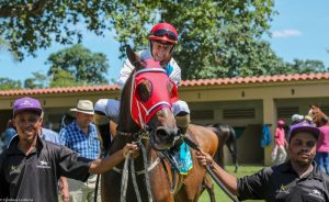 Captains Fort wins at The Vaal for Spies Racing