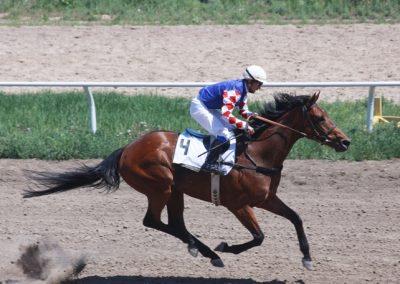 Dubawi Gulf Gr1 Winner