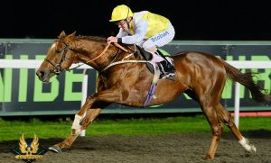Deserving favourite King's Advice (Pic – Mark Johnston Racing)