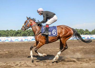 Nile Empress Gr1 Winner