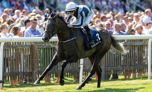 Alpha Centauri by Mastercraftsman, now four times Gr1 winner.
