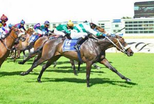 Promising 2016 double winner Adorada bred and raced in an Allan-managed project