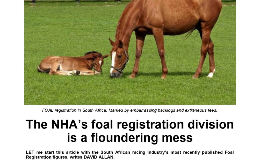NHA's foal registration division is an open sore – Turf Talk 20 August 2020