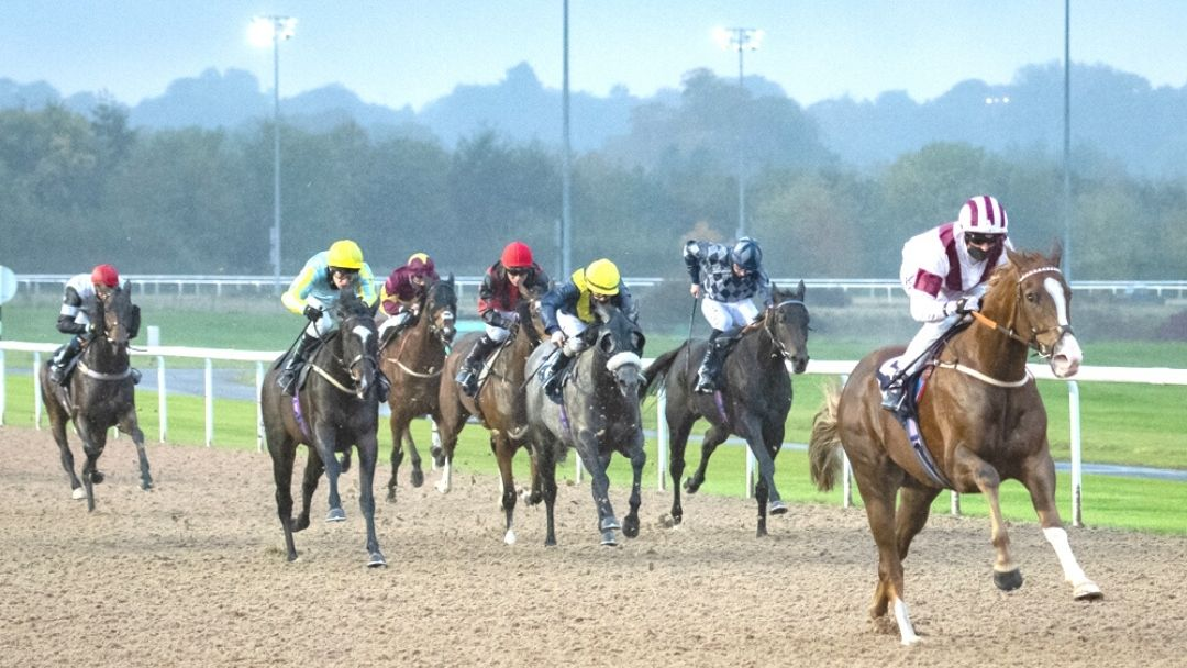 Flying Standard kicks clear to win comfortably