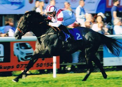 Ice Lord wins at Salisbury by 8 lengths for Hintlesham Racing UK