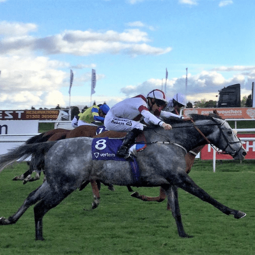 Ice Lord with the excellent Richard Kingscote wins nice race at Doncaster