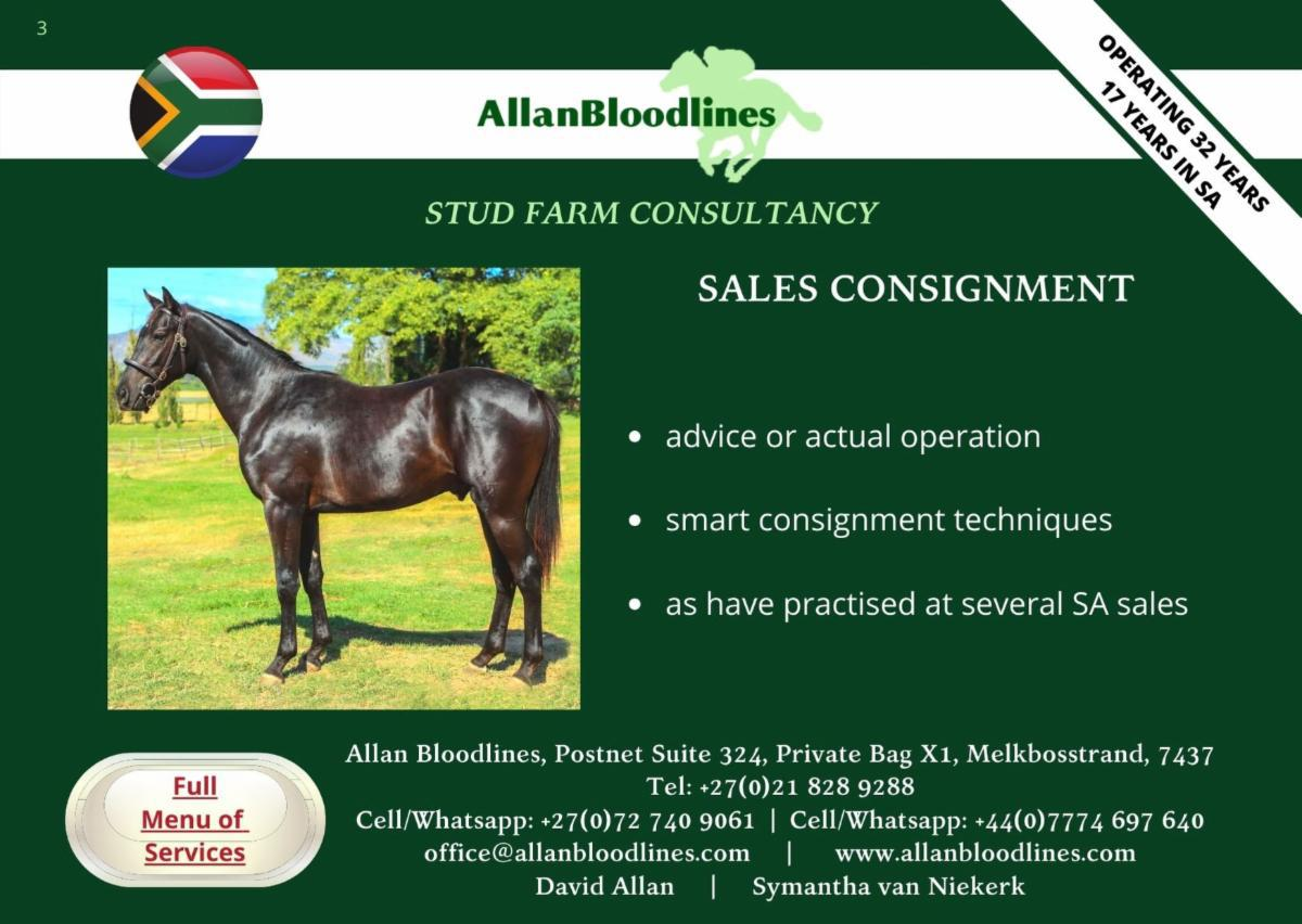 AllanBloodlines Yearling Purchasing