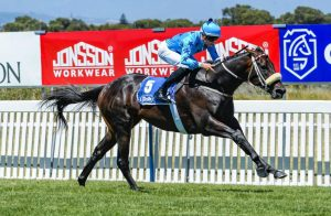 Luke Ferrraris guides Ambiorix to a facile first win (Pic – Chase Liebenberg)