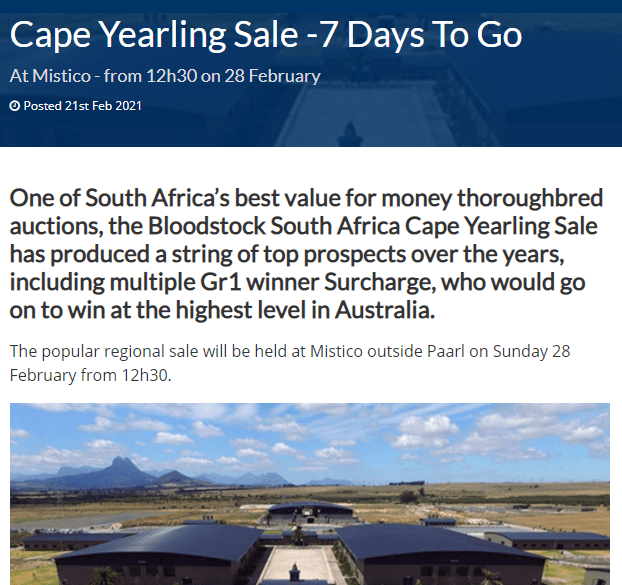 CAPE YEARLING SALE – LOTS TO BID FOR: SPORTING POST