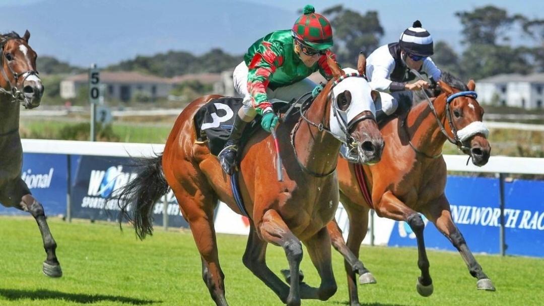 Hintlesham Racing SA Bushy Park wins at Kenilworth