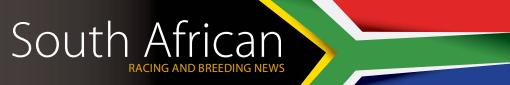 SA News banners