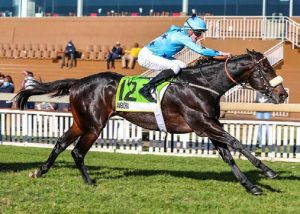 Ambiorix (Vercingetorix) won the Gr.1 Gold Medallion at Scottsville last weekend to the delight of British-based bloodstock agent David Allan, who secured the colt for R250,000 and is the nominee of the racing owner Burns Racing.