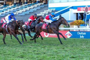 Klawervlei Kommet ride to breeders title